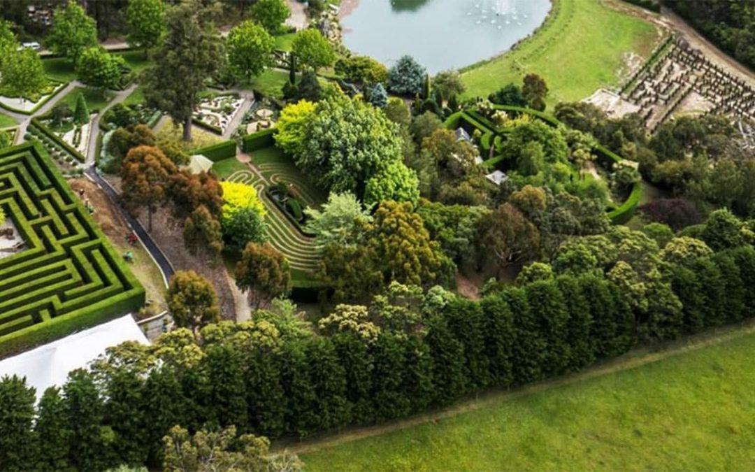Enchanted Maze Garden