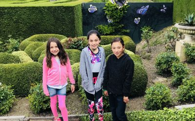 Fun at the Enchanted Maze when staying at Kanasta Caravan Park